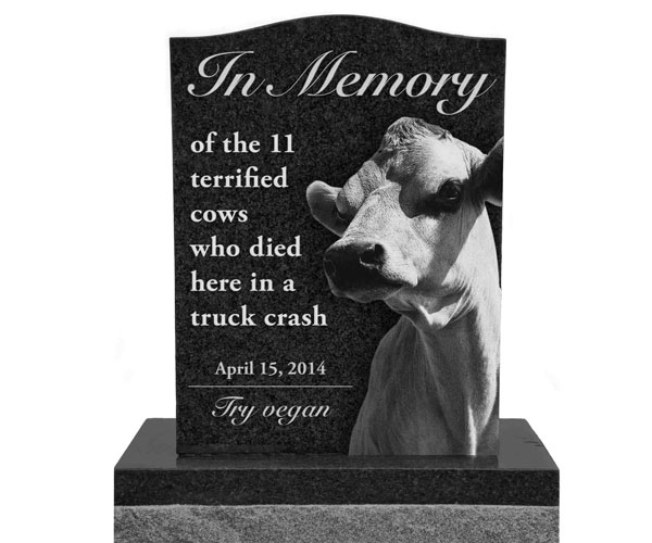 Simple upright granite plaques monuments with carving bull relief